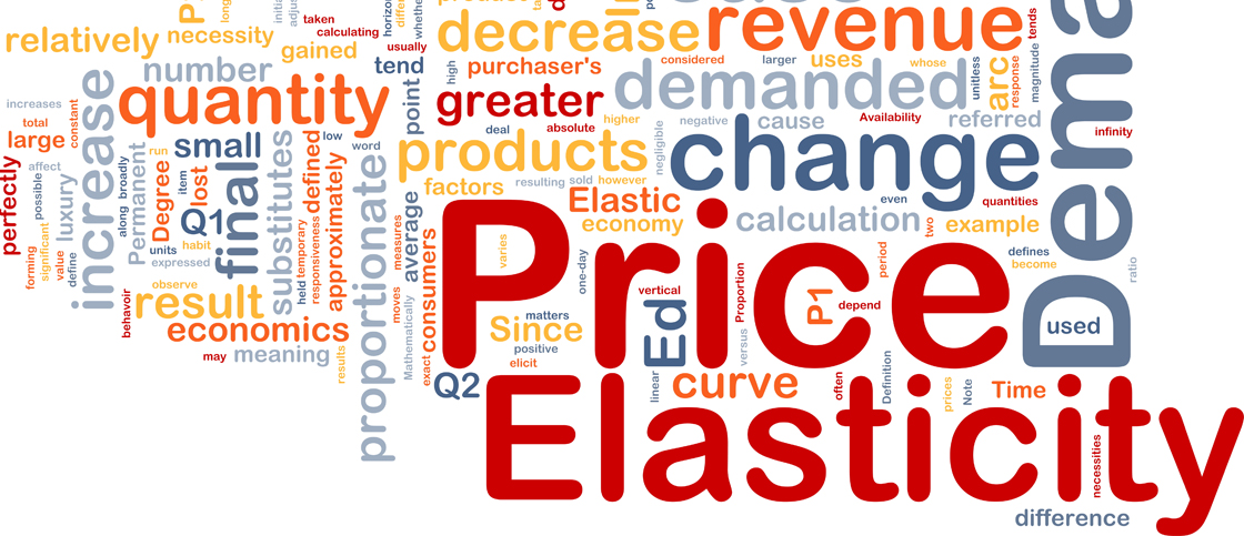 Dynamic Price Elasticity and Cross-Price Elasticity